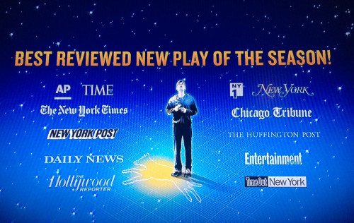 Screen grab of Curious Incident ad